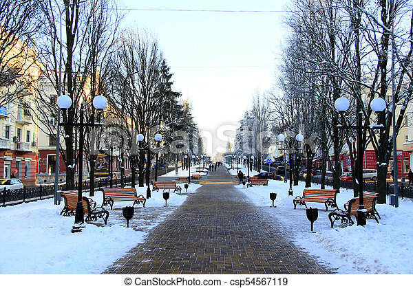 city park in the winter - csp54567119