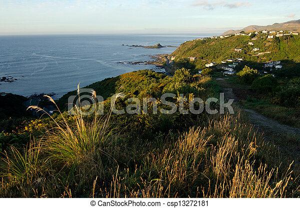 Wellington Cityscape - csp13272181