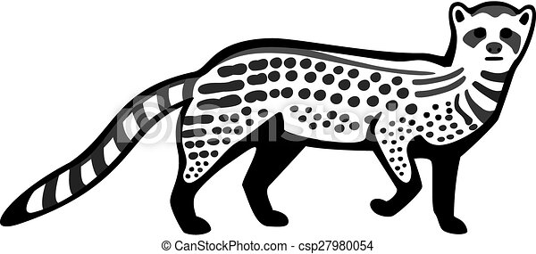 civet cat vector line drawing of an african civet cat https www canstockphoto com civet cat 27980054 html