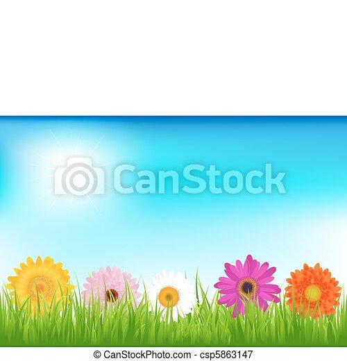 clair, fleurs - csp5863147