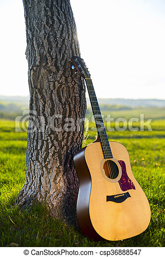 Classical Guitar Propped Against A Tree Trunk In The Background Grass