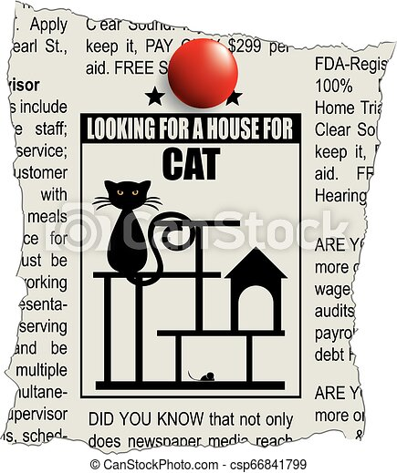 Classified ad house for a cat - csp66841799