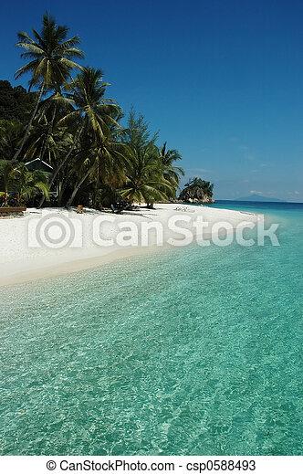 clean beach - csp0588493