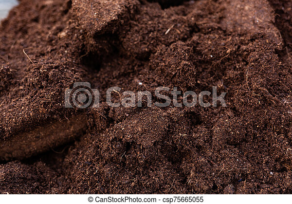 Clean soil for cultivation. - csp75665055