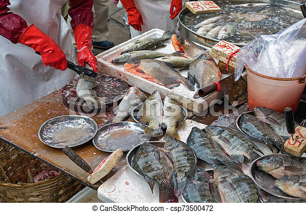 Cleaning Fish - csp73500472