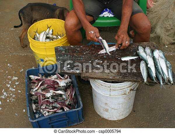 cleaning fish - csp0005794
