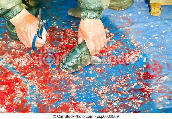 cleaning fish - csp6002509