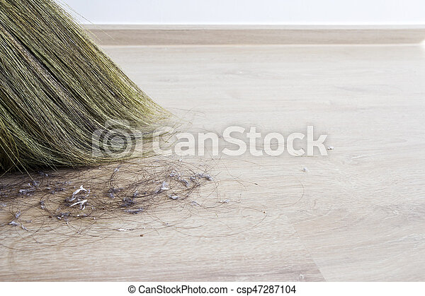 Cleaning Hair And Dust In The Bedroom Canstock