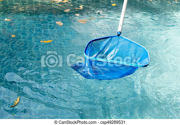 Cleaning swimming pool of fallen leaves with blue skimmer net