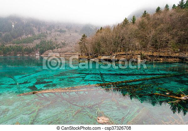 Clear lake - csp37326708