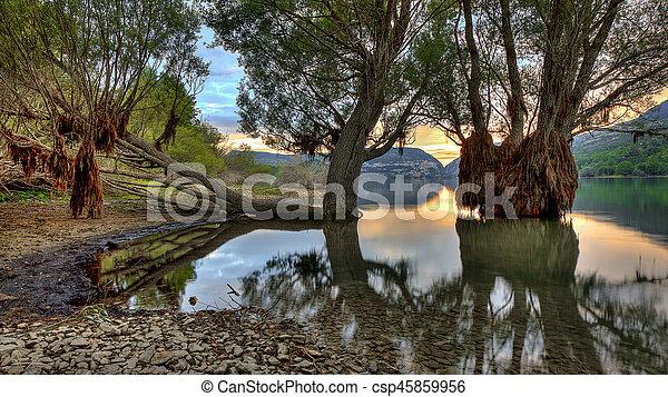 Clear lake trees - csp45859956
