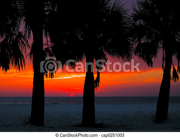 Clearwater Sunset - csp0251003