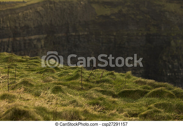 Cliffs of Moher in County Clare, Ireland - csp27291157