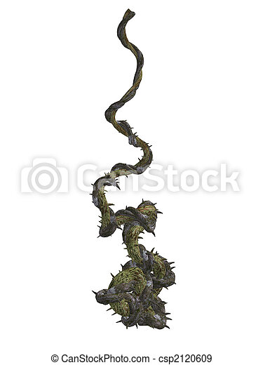 Climbing vines with thornes  - csp2120609