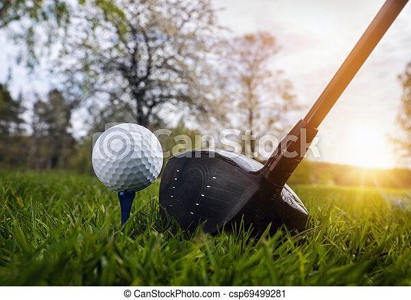 Close up at golf club and golf ball - csp69499281