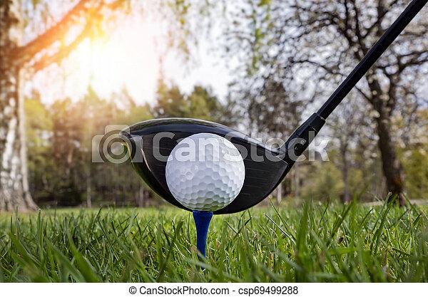 Close up at golf club and golf ball - csp69499288