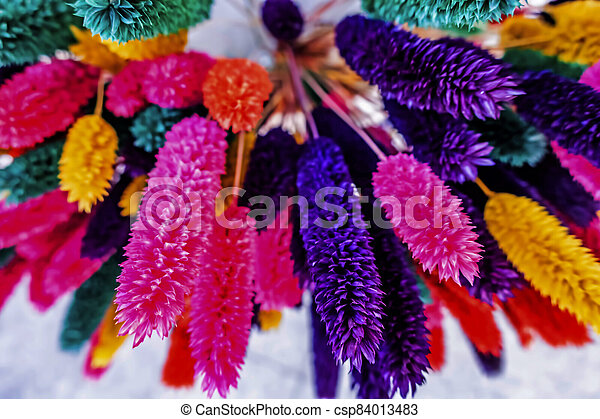 close up colorful dried flowers - csp84013483