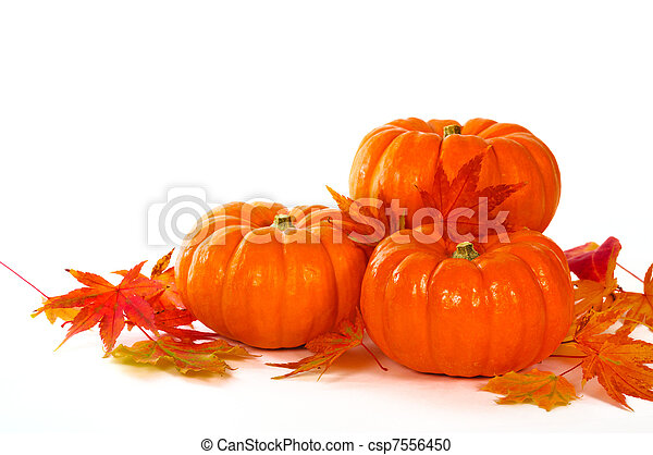 Close up composition of pumpkins and leaves on the table. - csp7556450