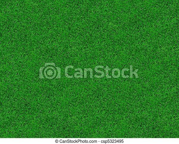 Close-up image of fresh spring green grass - csp5323495