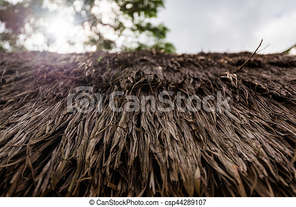 close up natural thatche roof outdoors - csp44289107