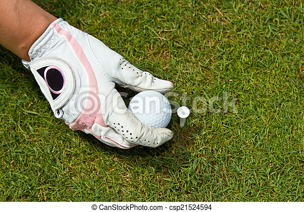 Close-up of a gloved hand of a woman golfer placing golf ball on - csp21524594