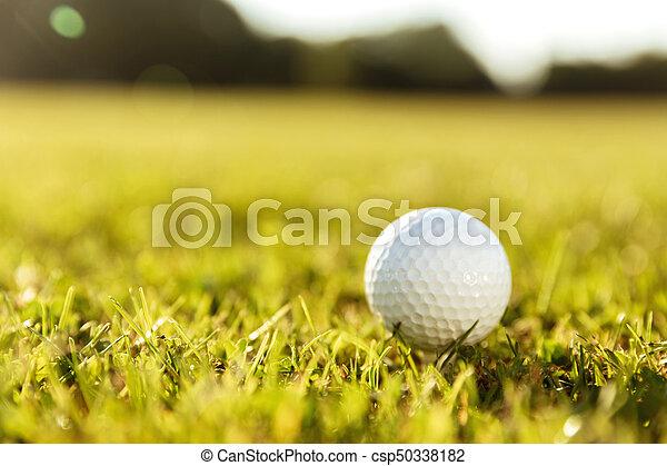 Close up of a golf ball on a tee - csp50338182