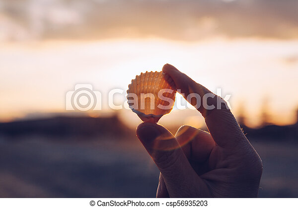 Close up of a hand holding a shell on the beach at sunset - winter season - story telling sequence - csp56935203