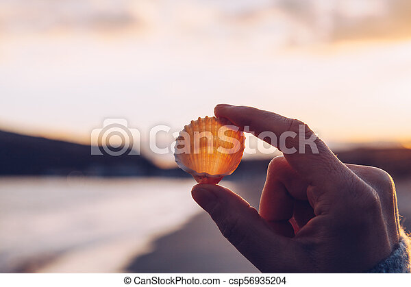 Close up of a hand holding a shell on the beach at sunset - winter season - story telling sequence - csp56935204