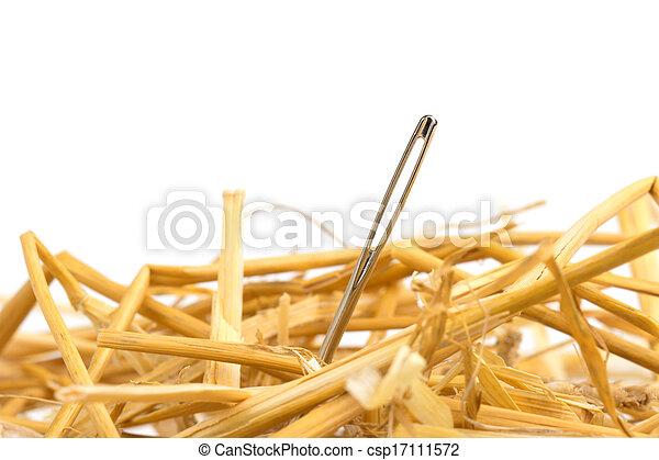 close up of a needle in haystack - csp17111572