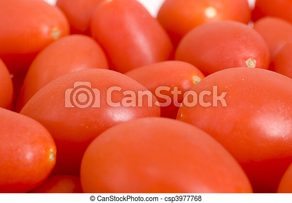 Close up of Baby Tomatoes - csp3977768