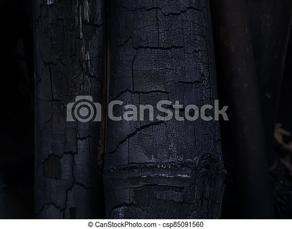 Close up of bamboo charcoal. - csp85091560