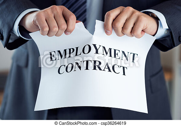 Close up of businessman hands breaking employment contract - csp36264619