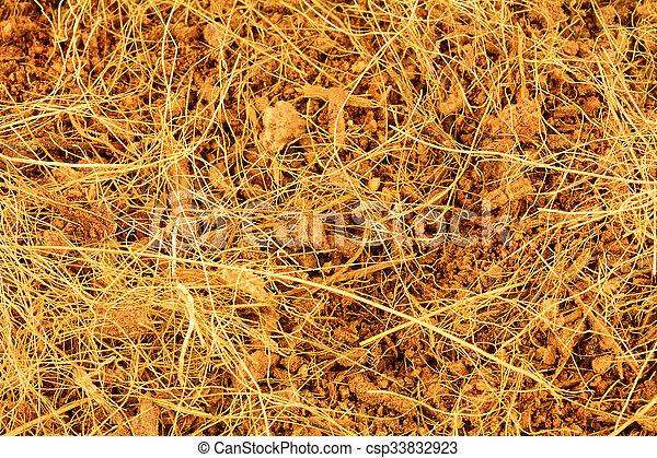 Close up of coconut fiber texture - csp33832923