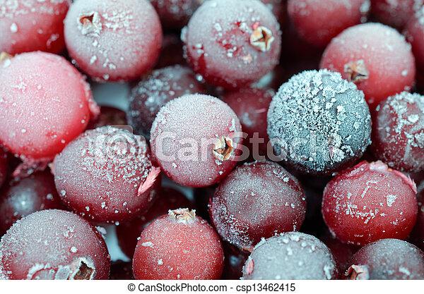 Close up of cranberries - csp13462415