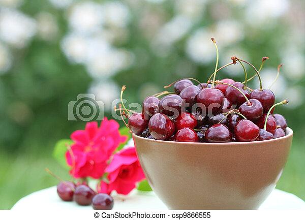 Close-up of fresh cherry - csp9866555