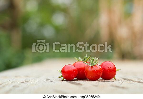 Close-up of fresh, ripe tomatoes on wood background. - csp36365240