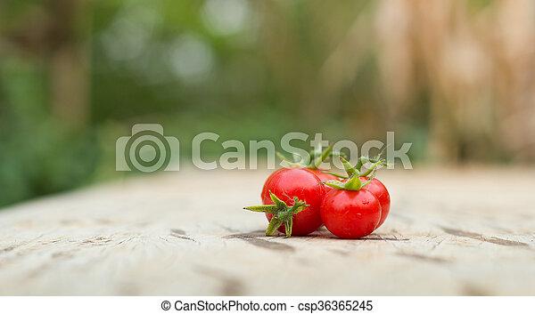 Close-up of fresh, ripe tomatoes on wood background. - csp36365245