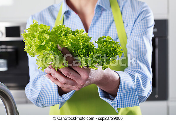 Close-up of lettuce in the hands - csp20729806