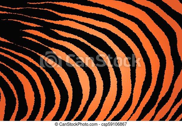 Close up Stripe Animal Pattern - csp59106867