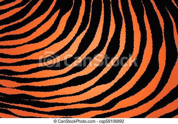 Close up Stripe Animal Pattern - csp59106892