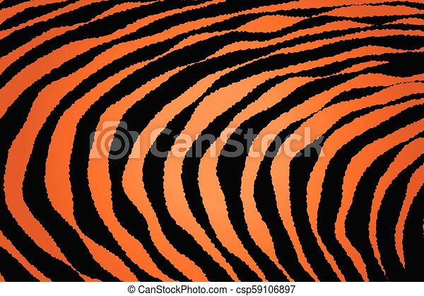 Close up Stripe Animal Pattern - csp59106897