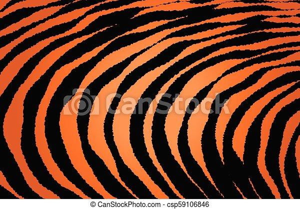 Close up Stripe Animal Pattern - csp59106846