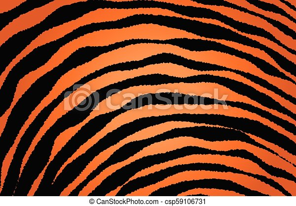 Close up Stripe Animal Pattern - csp59106731