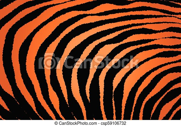Close up Stripe Animal Pattern - csp59106732