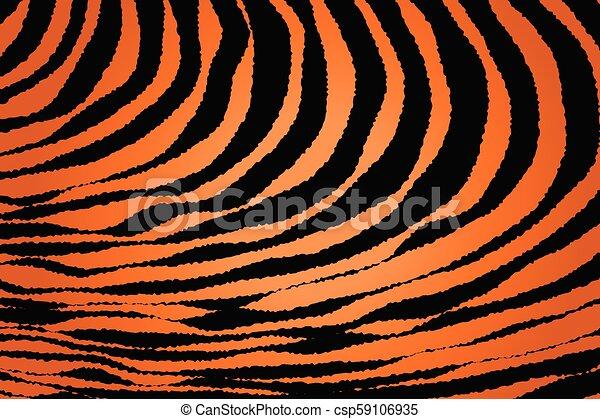 Close up Stripe Animal Pattern - csp59106935