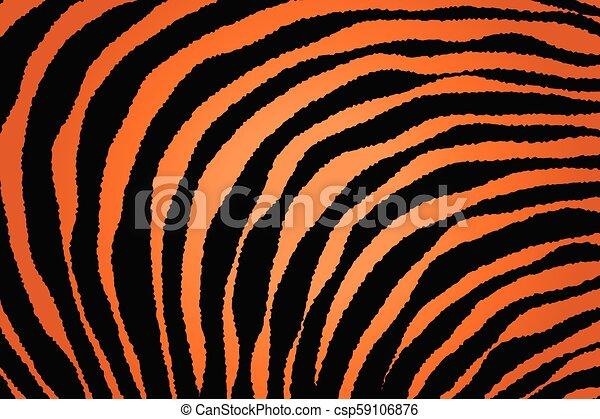 Close up Stripe Animal Pattern - csp59106876