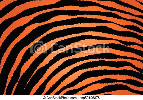 Close up Stripe Animal Pattern - csp59106878