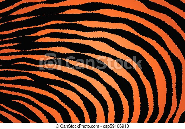 Close up Stripe Animal Pattern - csp59106910