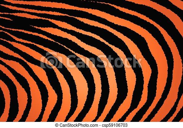Close up Stripe Animal Pattern - csp59106703