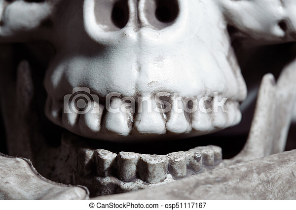 Close-up view on the human skull - csp51117167